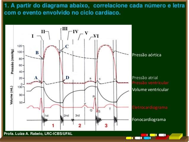 Exercícios Fisiologia Cardiovascular Slide 3