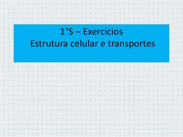 1°S – Exercícios  Estrutura celular e transportes