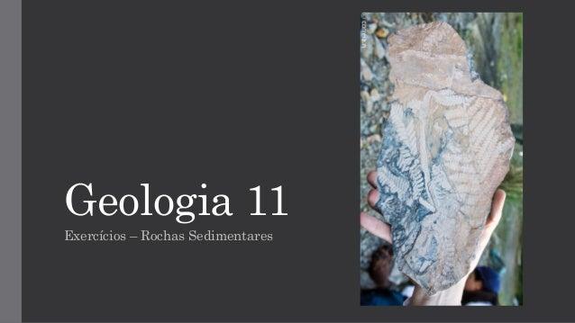 Geologia 11 Exercícios – Rochas Sedimentares