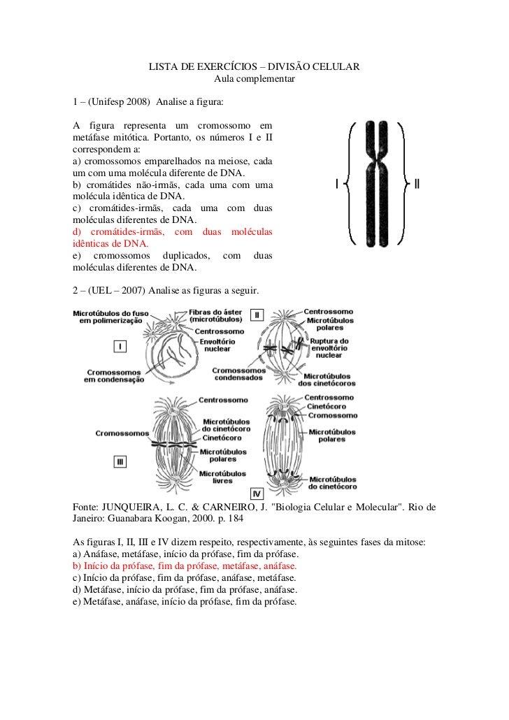 LISTA DE EXERCÍCIOS – DIVISÃO CELULAR                               Aula complementar1 – (Unifesp 2008) Analise a figura:A...