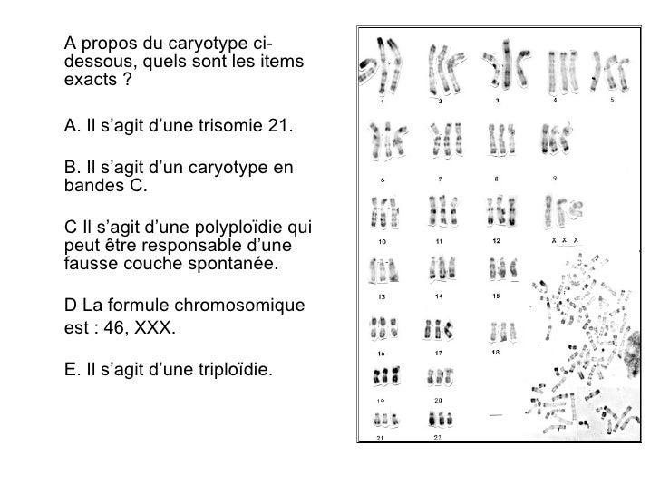 Exercices cytog n tique - Anomalie chromosomique fausse couche ...