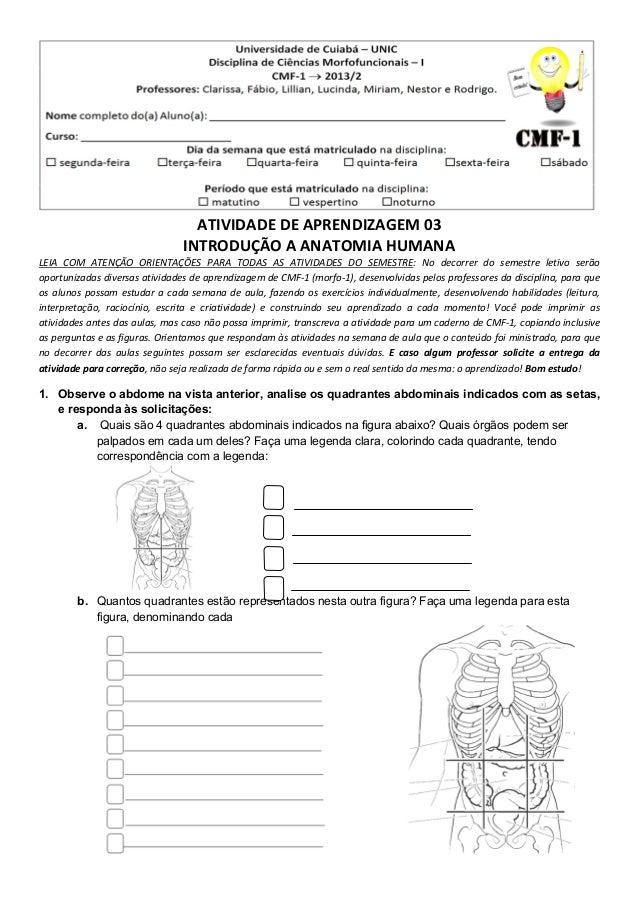ATIVIDADE DE APRENDIZAGEM 03 INTRODUÇÃO A ANATOMIA HUMANA LEIA COM ATENÇÃO ORIENTAÇÕES PARA TODAS AS ATIVIDADES DO SEMESTR...