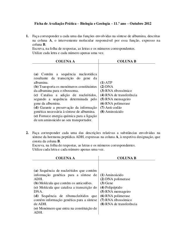 Ficha de Avaliação Prática – Biologia e Geologia – 11.º ano – Outubro 20121. Faça corresponder a cada uma das funções envo...