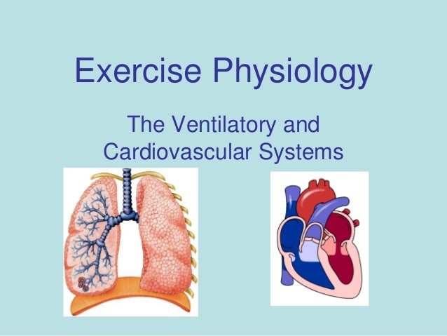 review sheet exercise 6 cardiovascular physiology Start studying anatomy physioex exercise 6, cardiovascular physiology learn vocabulary, terms, and more with flashcards, games, and other study tools.