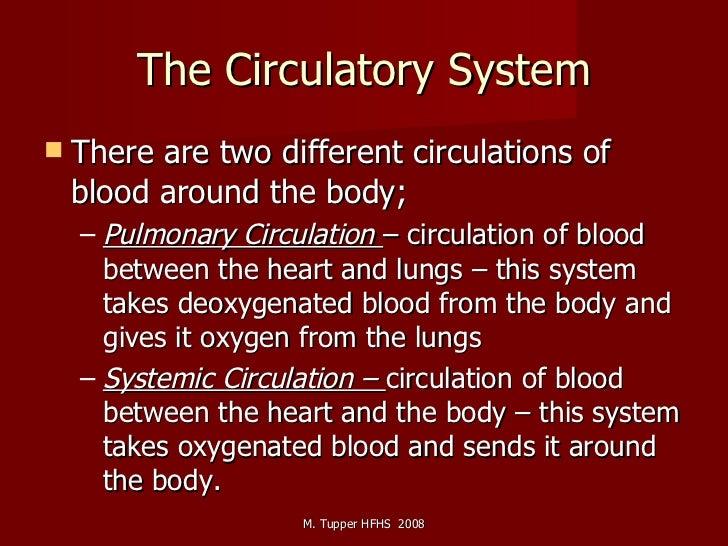 The Circulatory System <ul><li>There are two different circulations of blood around the body; </li></ul><ul><ul><li>Pulmon...