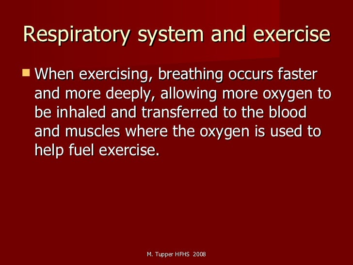 Respiratory system and exercise <ul><li>When exercising, breathing occurs faster and more deeply, allowing more oxygen to ...