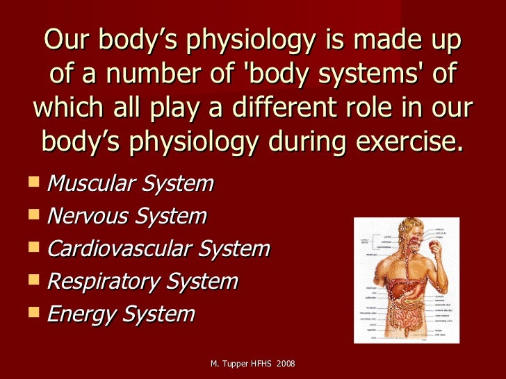 Our body's physiology is made up of a number of 'body systems' of which all play a different role in our body's physiology...