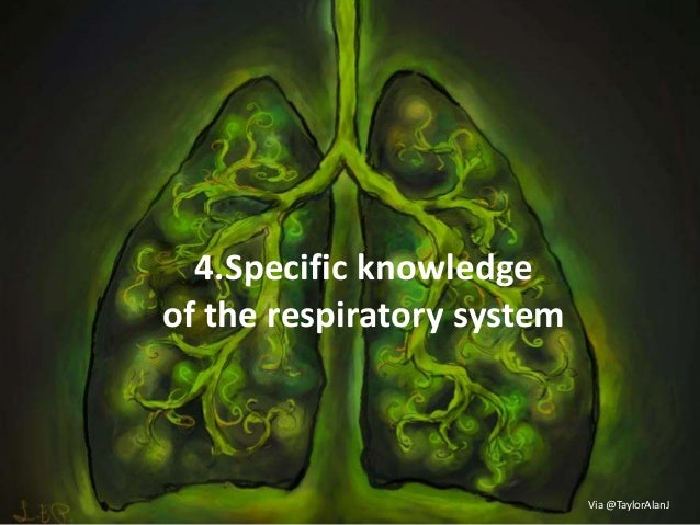 4.Specific knowledge of the respiratory system Via @TaylorAlanJ