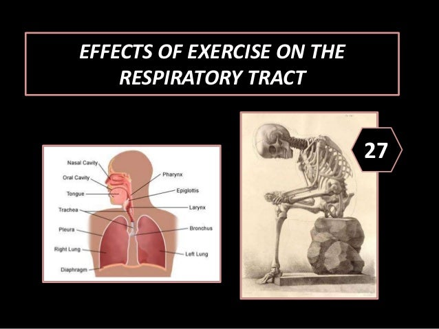 Health Benefits of Exercise 3