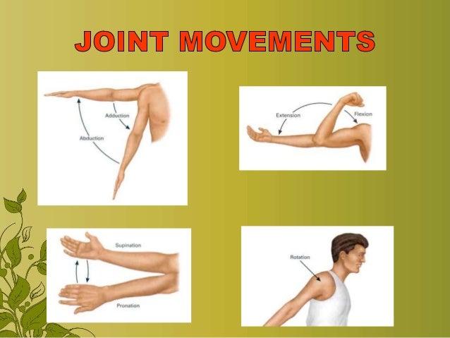 Exercise & range of motion exercise