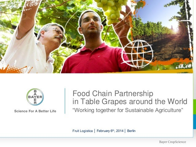 """Table grape Pics  Food Chain Partnership in Table Grapes around the World """"Working together for Sustainable Agriculture""""  ..."""