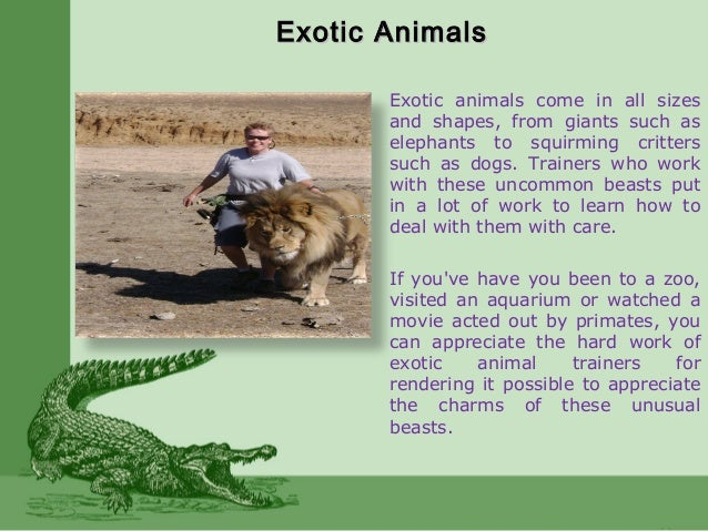 Exotic AnimalsExotic Animals Exotic animals come in all sizes and shapes, from giants such as elephants to squirming critt...