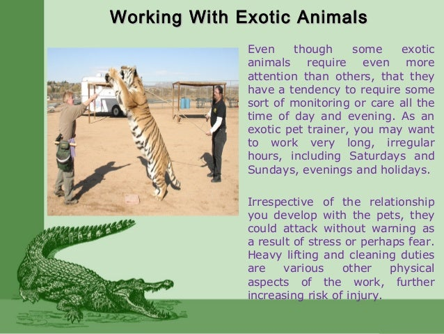 Working With Exotic AnimalsWorking With Exotic Animals Even though some exotic animals require even more attention than ot...