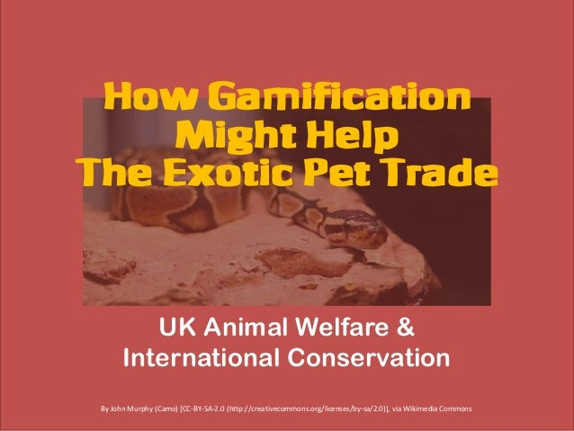 How Gamification Might Help The Exotic Pet Trade UK Animal Welfare & International Conservation By John Murphy (Camo) [CC-...
