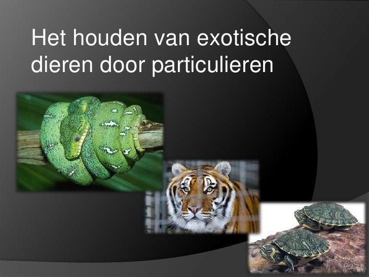 Het houden van exotische dieren door particulieren