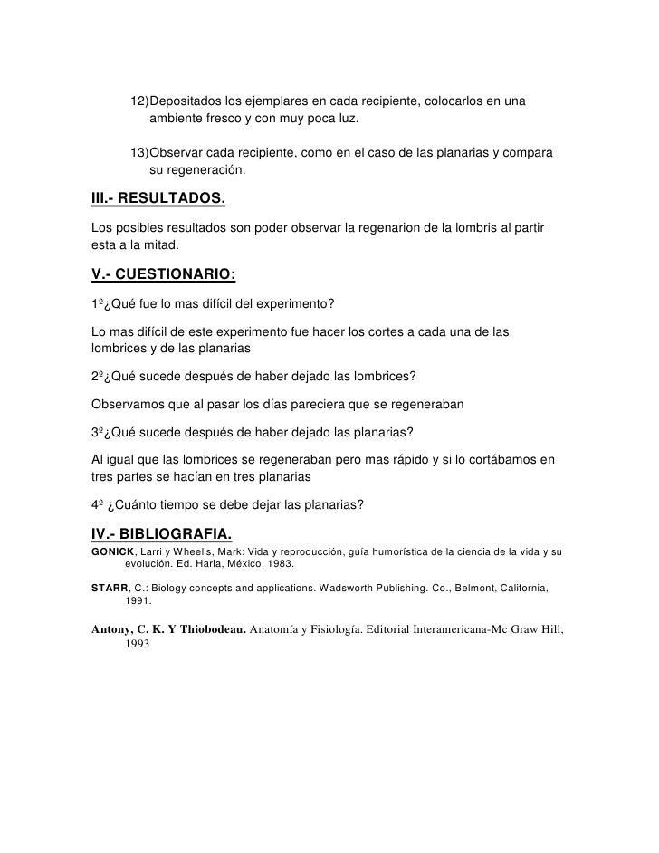 Excepcional Anatomía De La Planaria Molde - Imágenes de Anatomía ...