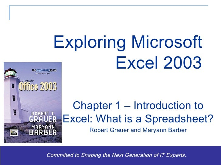 Exploring Microsoft Excel 2003 Committed to Shaping the Next Generation of IT Experts. Chapter 1 – Introduction to Excel: ...