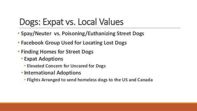 Conclusions • Expatriates in Ajijic / Lake Chapala generate community via their Facebook Group • Networking for social act...