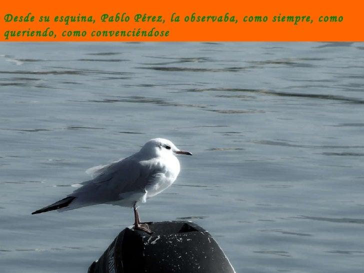 Desde su esquina, Pablo Pérez, la observaba, como siempre, como queriendo, como convenciéndose