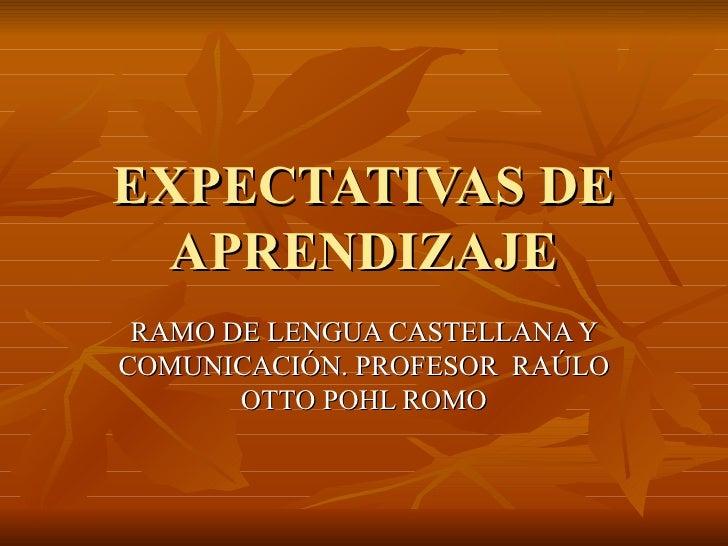 EXPECTATIVAS DE APRENDIZAJE RAMO DE LENGUA CASTELLANA Y COMUNICACIÓN. PROFESOR  RAÚLO OTTO POHL ROMO