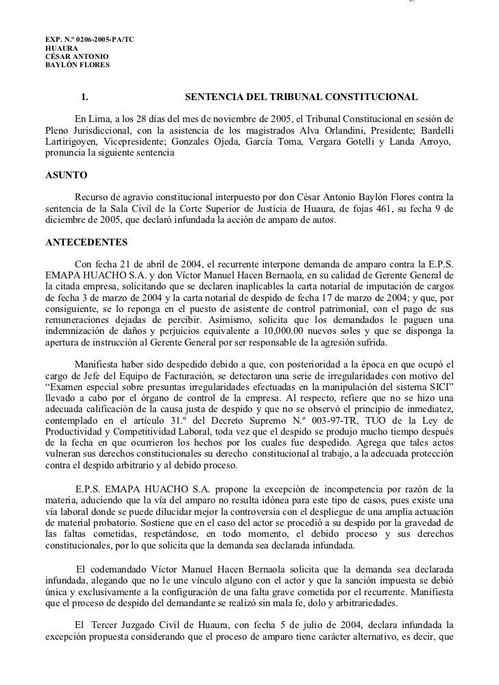 0206-2005-AA                                                                           Página 1 de 9EXP. N.° 0206-2005-PA/...