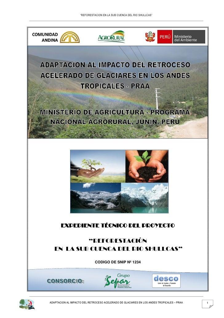 """""""REFORESTACION EN LA SUB CUENCA DEL RIO SHULLCAS""""       EXPEDIENTE TÉCNICO DEL PROYECTO            """"REFORESTACIÓN   EN LA ..."""