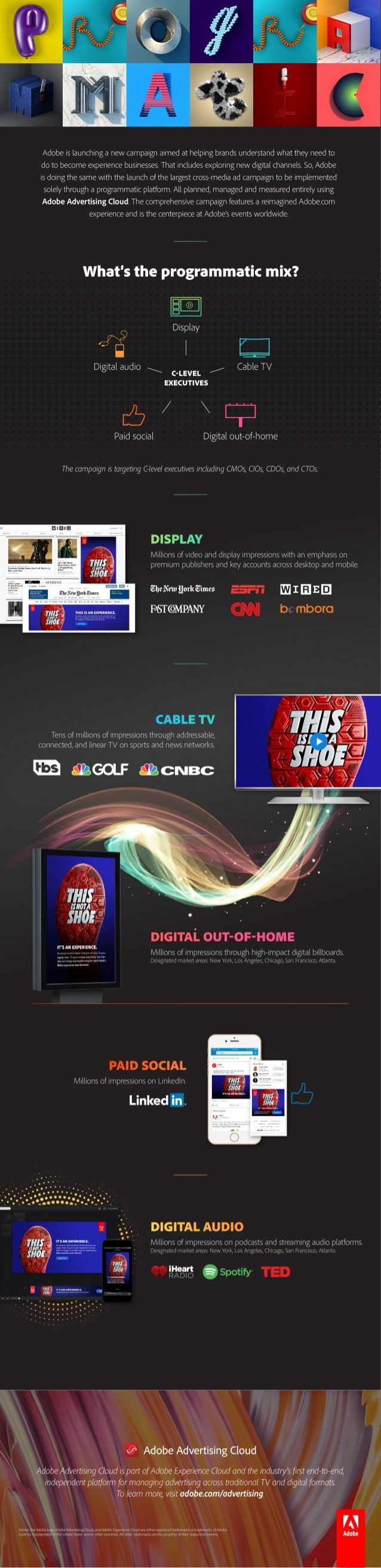 Adobe Experience Business Infographic