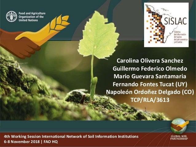 4th Working Session International Network of Soil Information Institutions 6-8 November 2018   FAO HQ Carolina Olivera San...