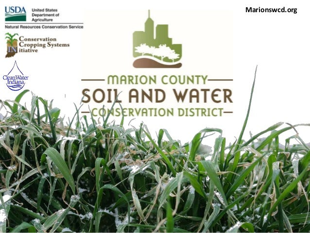 Marionswcd.org