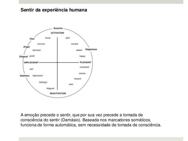 Sentir da experiência humana A emoção precede o sentir, que por sua vez precede a tomada de consciência do sentir (Damásio...
