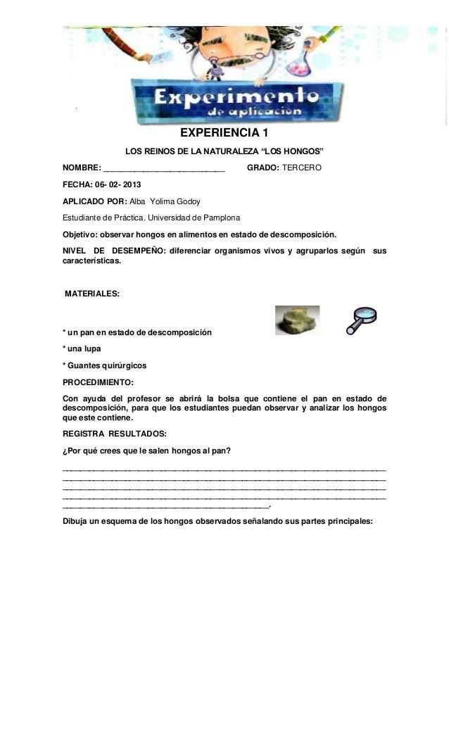 """EXPERIENCIA 1 LOS REINOS DE LA NATURALEZA """"LOS HONGOS"""" NOMBRE: ___________________________ GRADO: TERCERO FECHA: 06- 02- 2..."""
