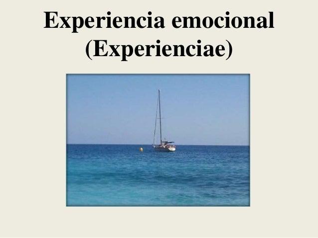 Experiencia emocional (Experienciae)