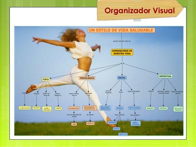 Organizador Visual