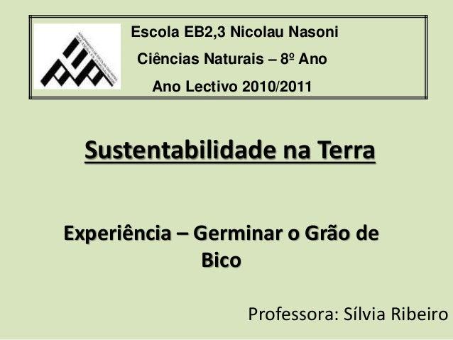 Sustentabilidade na Terra Experiência – Germinar o Grão de Bico Escola EB2,3 Nicolau Nasoni Ciências Naturais – 8º Ano Ano...