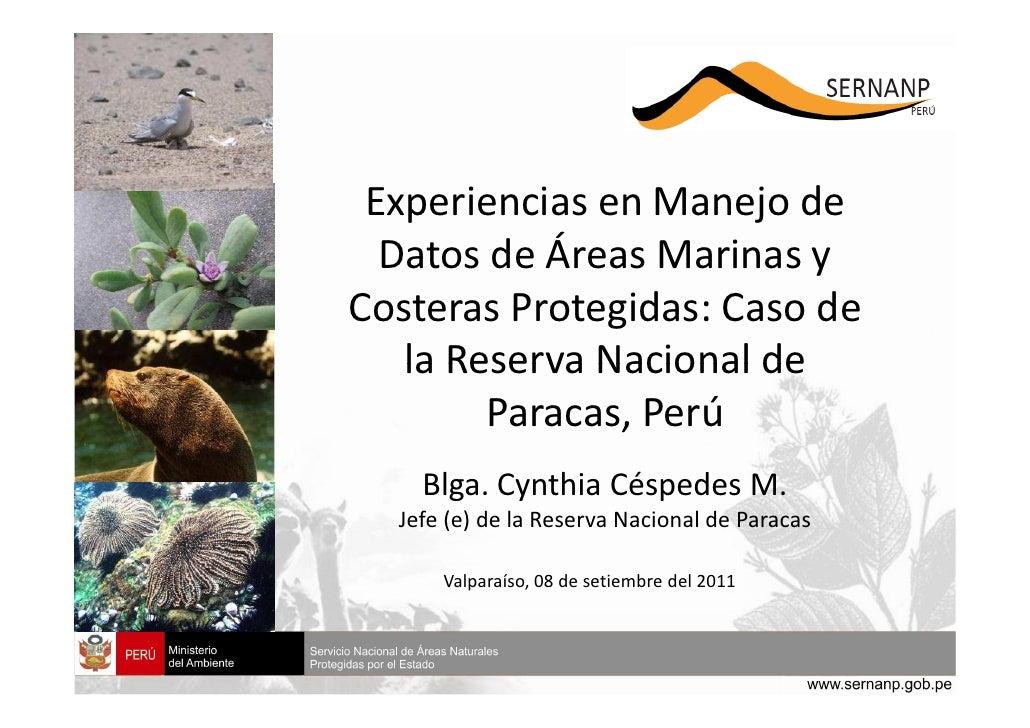 Experiencias en Manejo de  Datos de Áreas Marinas yCosteras Protegidas: Caso de   la Reserva Nacional de        Paracas, P...