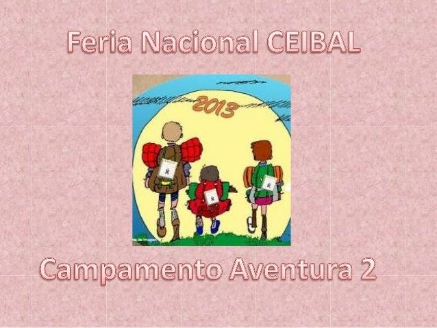 Experiencia seleccionada a nivel departamental para participar del Campamento Ceibal 2013