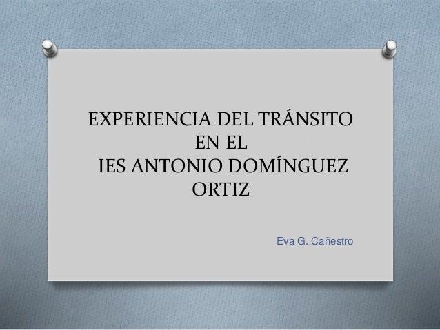 EXPERIENCIA DEL TRÁNSITO EN EL IES ANTONIO DOMÍNGUEZ ORTIZ Eva G. Cañestro