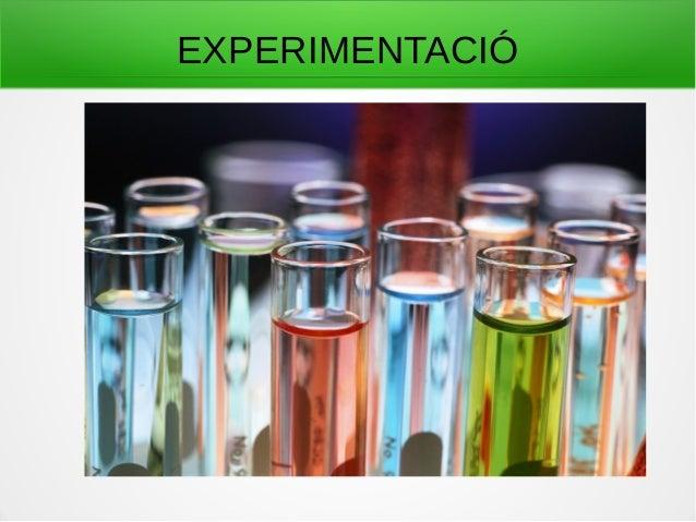 EXPERIMENTACIÓ