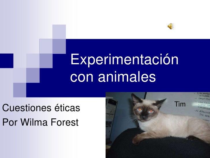 Experimentación con animales<br />Tim<br />Cuestiones éticas<br />Por WilmaForest<br />