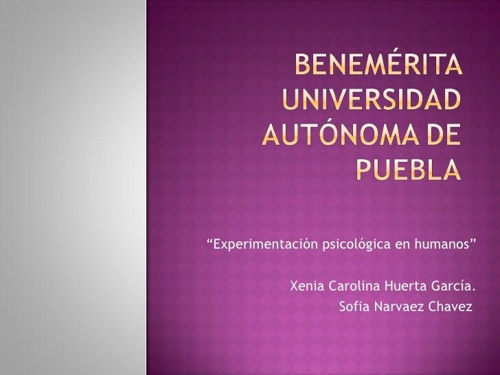 """""""Experimentación psicológica en humanos""""            Xenia Carolina Huerta García.                   Sofia Narvaez Chavez"""