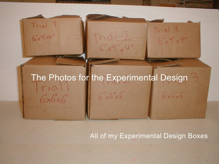 The Photos for the Experimental Design              All of my Experimental Design Boxes