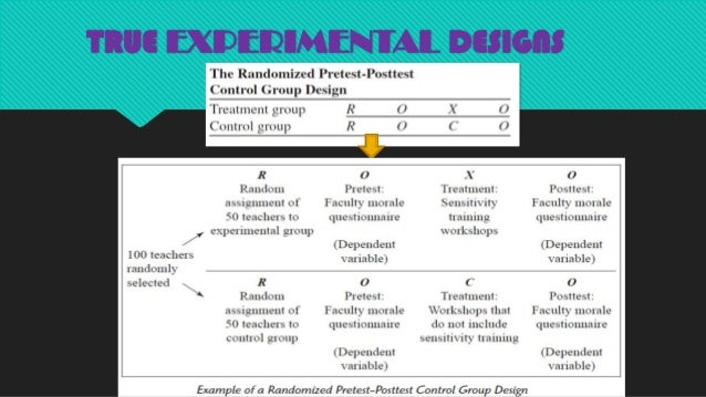 essay words definition many reference