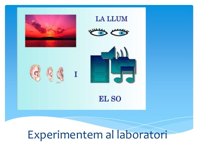 Experimentem al laboratori El pas de la llum per diferents objectes.