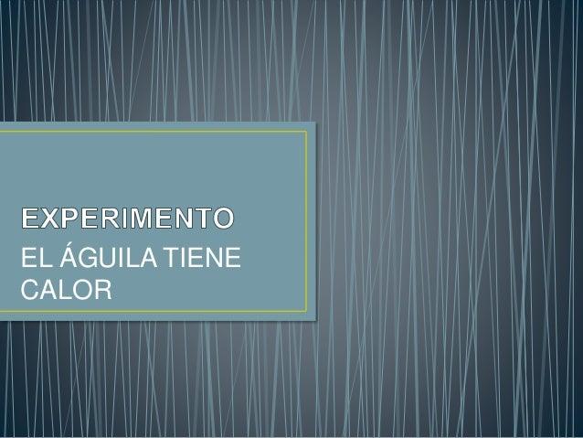 EL ÁGUILA TIENE CALOR