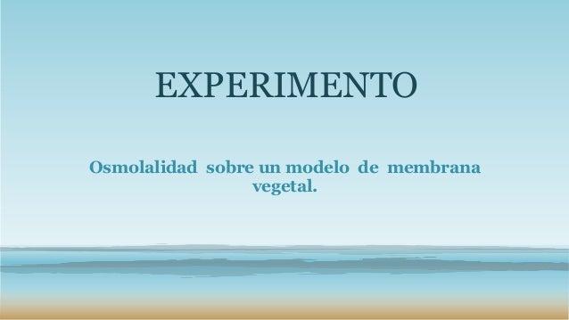 EXPERIMENTOOsmolalidad sobre un modelo de membrana                 vegetal.