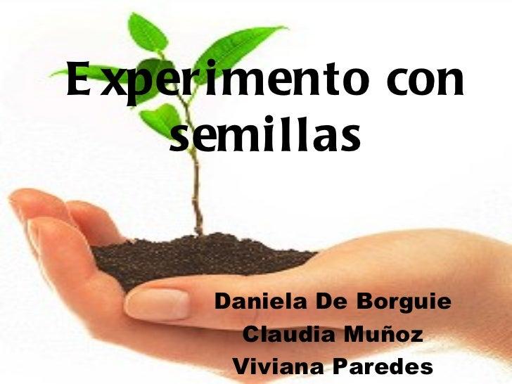 Experimento con semillas Daniela De Borguie Claudia Muñoz Viviana Paredes