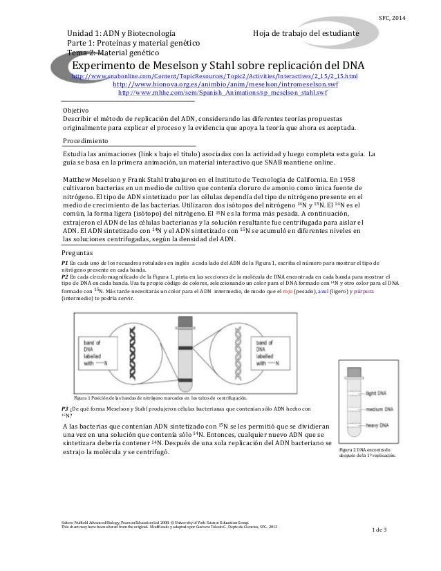 SFC,  2014  Unidad  1:  ADN  y  Biotecnología   Parte  1:  Proteínas  y  material  genético   Tema...