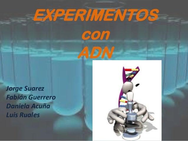 EXPERIMENTOS con ADN Jorge Suarez Fabián Guerrero Daniela Acuña Luis Ruales
