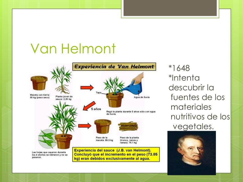 Van Helmont  *1648  *Intenta  descubrir la  fuentes de los  materiales  nutritivos de los  vegetales.