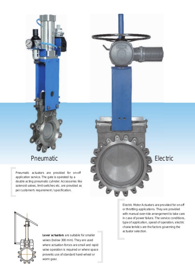 Expert Knife Gate Valves